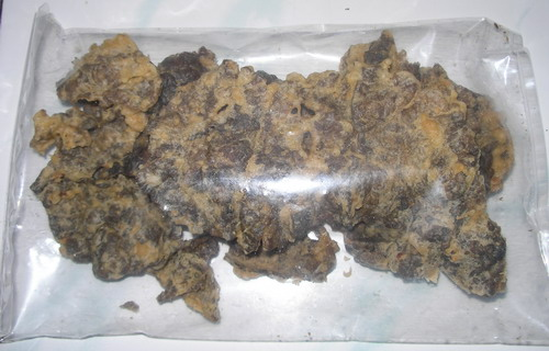 Keripik Paru dalam kemasan besar (foto: salatigapost.blogspot.com)